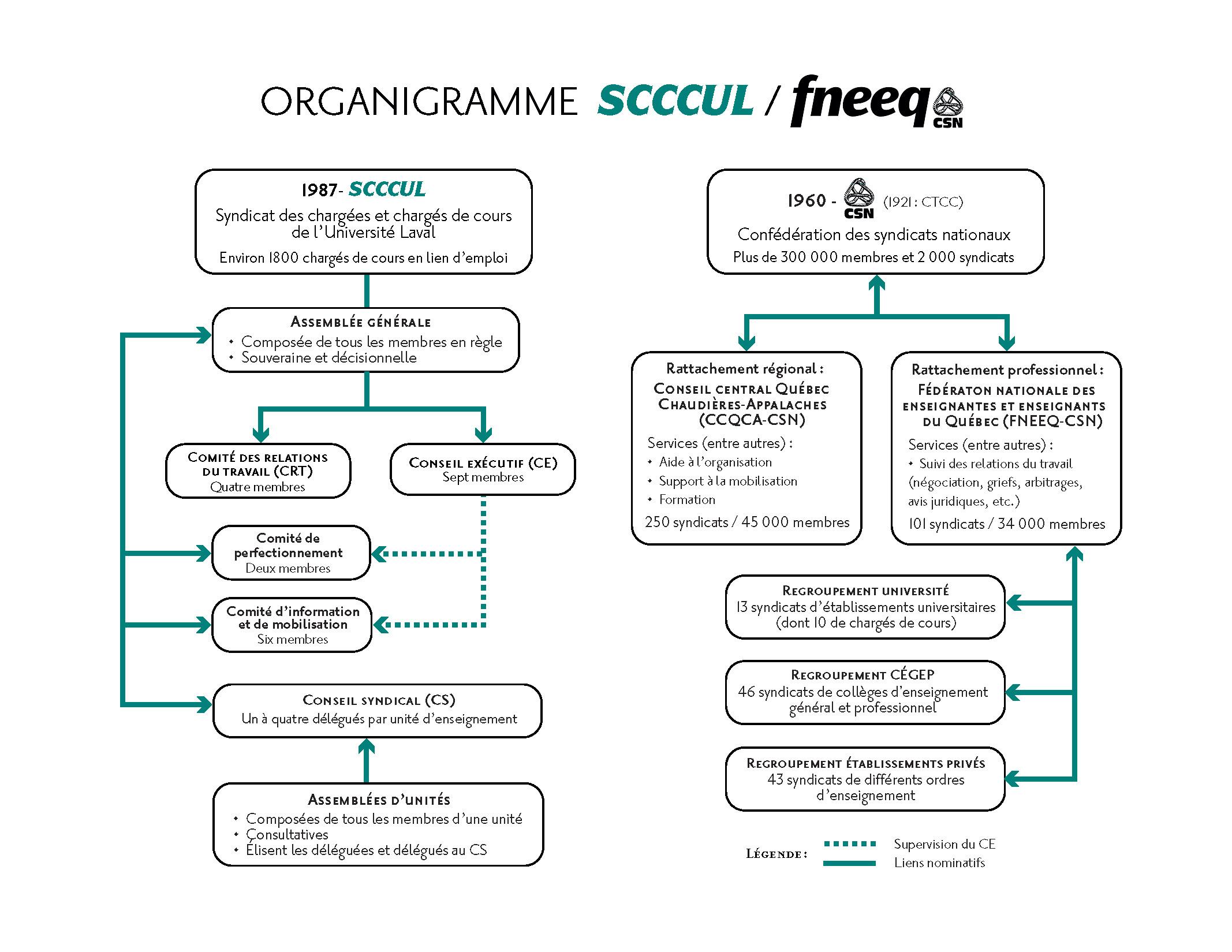 Organigramme-final-SCCCUL